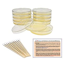 The #1 BEST SELLING BACTERIA SCIENCE KIT ON AMAZON: Professional quality products and services at unbeatable prices! Lots of science fair competition awards! We offer 100% money back guarantee. THE SAFEST AGAR PLATES ON AMAZON: Luria Broth agar plate...