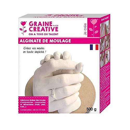 Graine Creative poeder, alginaat, ideaal voor lichaams- en levensmiddelafdrukken, 500 g