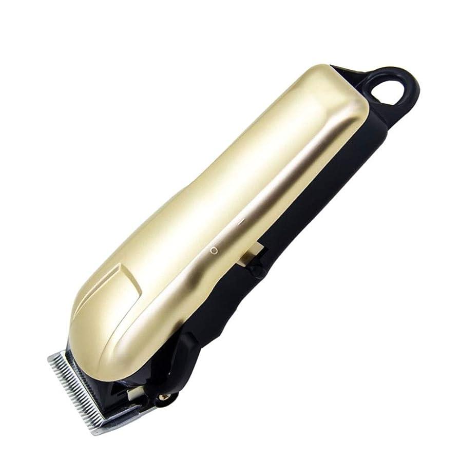 バリカンセット 男性用バリカントリマープラスバリカントリマーUSB充電式高性能ホームヘアトリマー (色 : ゴールド, サイズ : 18cm)