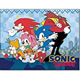 Sonic Classic- City Group Sublimation Throw Blanket