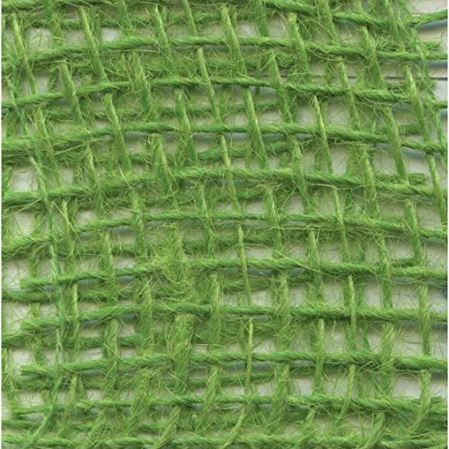 Vaessen Creative Jute Fabric Burlap Ribbon, Bright Green, One Size