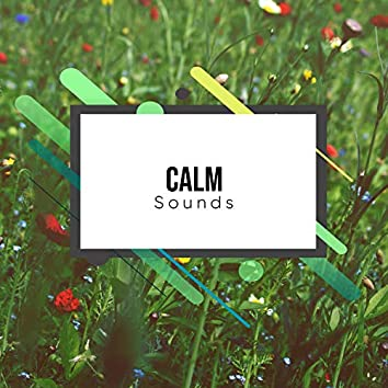 #12 Calm Sounds for Peaceful Yoga Practice