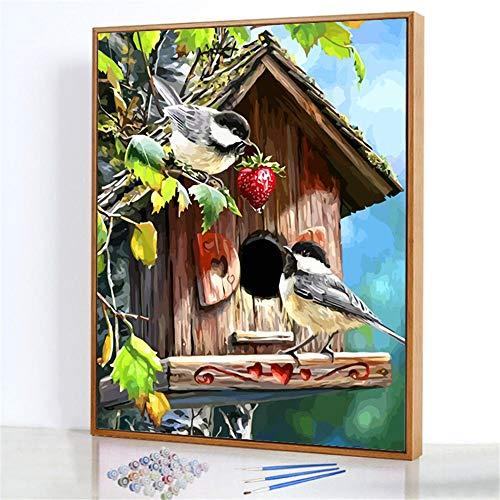 Diy Digitale Olieverfschilderij,Vogelhuisje Schilderen Door Cijfers,Linnen Canvas ,Foto Voor Binnendecoratie - 40x50cm(Fotolijst)