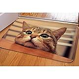Coloranimal 3D Animal Print Welcome Felpudo Alfombra de Franela Suave, para baño Dormitorio Sala de Estar Alfombrilla, Cat -12