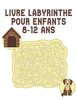 Livre Labyrinthe pour Enfants 8-12 ans: Labyrinthe livre d'activités pour les enfants garçons et filles amusant et facile 100 labyrinthes difficiles pour tous les âges