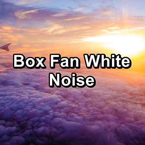 Granular, Fan Sounds & The Fan