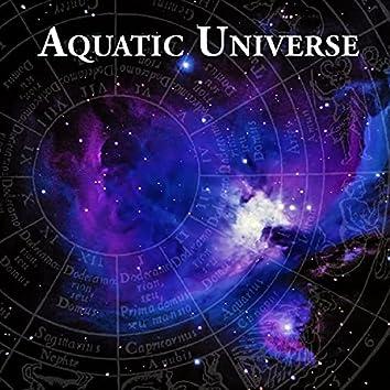Aquatic Universe