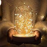 LEDナイトライト 瓶ライト エルエンスタジオ テーブルランプ メインソジャー風LEDナイトライト DIYできるベッドライト ベッドサイドランプ USB式/電池式ナイトライト 24時間連続照明 停電 緊急対応用品 間接照明インテリア