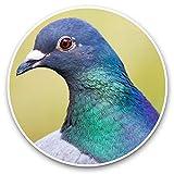 Impresionantes pegatinas de vinilo (juego de 2) 20 cm – Racing Pigeon Bird Birds Wildlife Fun Decals para portátiles, tabletas, equipaje, reserva de chatarras, neveras, regalo fresco #46231