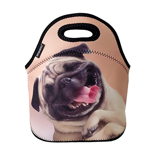 ALLYDREW Insulated Neoprene Lunch Bag Zipper Lunch Box Tote, Happy Pug