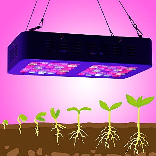 Poncherish3DE Reflector 300W LED Grow Light LED Pflanzenlampe Full Spectrum wachsen für Zimmerpflanzen Gemüse und Blumen