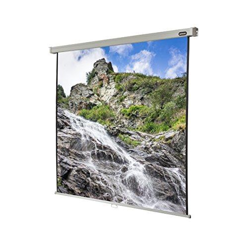 celexon manuell ausziehbare Heimkino- und Business-Beamer-Leinwand 4K und Full-HD Rollo-Leinwand Professional - 200 x 200 cm - 1:1 - Gain 1,2