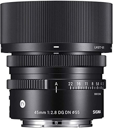 Sigma 14-24mm F2.8 DG DN Art Lens for Leica L