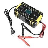 Autobatterie Ladegerät 8A 12V / 4A 24V Automatische Intelligente Batterie Maintainer Schutz Anzug...