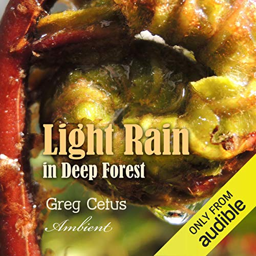 Light Rain in Deep Forest cover art