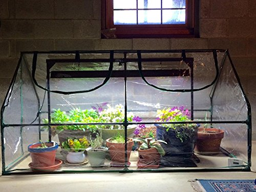 "Quictent Garden Green House - Mini Portable Hot House 71"" WX 36"" D X 36"" H Greenhouse"