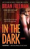 In the Dark: A Novel (Jonathan Stride Book 4)