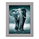 goldbuch Cadre photo Toscana en bois pour photo au format 13 x 18 cm, cadre photo avec support et support mural, cadre unique en MDF, cadre photo, gris