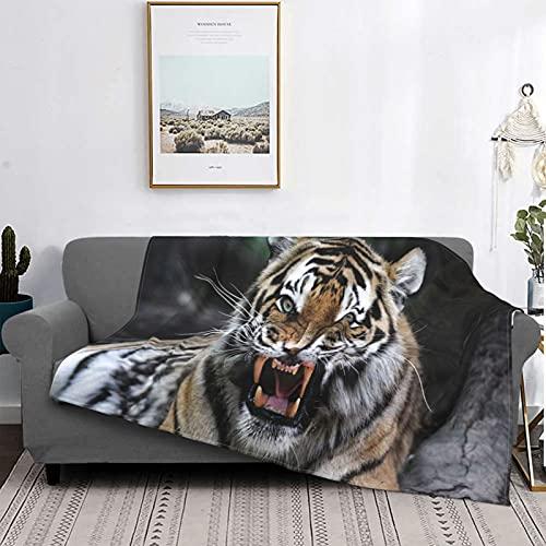 Manta Mantas de microfibra ultra suave, cara de tigre con rugido de vida salvaje Safari Savannah Animal Nature Zoo Impresión de fotos, manta suave y liviana para cama, sofá, sala de estar, 40 'x 50'