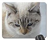 Mauspad Katzen-Kopf-Katze-Ohr-Katze Whiskers Katze Haustier Mausmatte Premium Mousepads Matte Reibungslos Office Mauspad Für Büro Cadeau Zuhause 25X30Cm