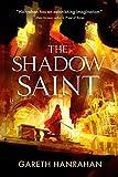 The Shadow Saint (The Black Iron Legacy Book 2)