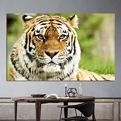 HSFFBHFBH Pintura de Paisaje de Tigre Salvaje de la Selva Moderna Impresión en Lienzo Arte Animal Cuadro de Pared para Sala de Estar Sofá Decoración Moderna Marco Interior de 60x100 cm