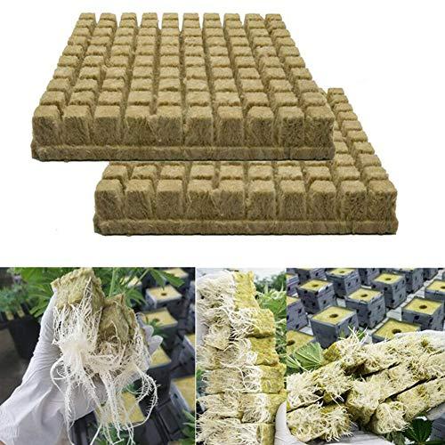 Rockwool Lot de 50/100 cubes de laine de roche pour boutures, clonage, propagation des plantes, serre, base en laine de roche pour la croissance vigoureuse des plantes