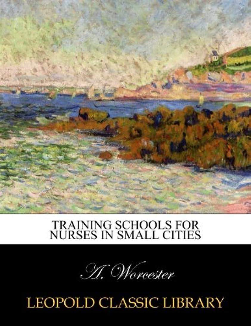 つづり慢性的赤外線Training schools for nurses in small cities