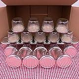 flaschenbauer.de 24er Set Sturzgläser 230 ml inkl. Silberne Twist Off Deckel TO82 zum Einmachen von Suppen, Babynahrung, Dips oder zur Aufbewahrung von Tee und Kräuter