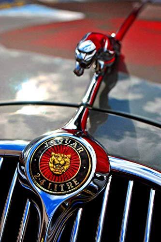 Jaguar Classic Car Leaping Cat Leaper Bonnet Hood Ornament And Badge Photograph (12'x18')