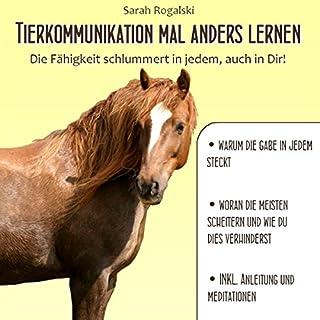 Tierkommunikation mal anders lernen Titelbild