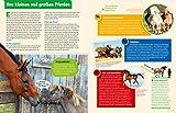 WAS IST WAS Pferde und Ponys: Reiten, Fohlen, Pferdesprache, Turniere, Zucht und Pflegepferd! (WAS IST WAS Edition) - 3