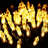 Clear Bulbs Christmas Lights - HAYATA 100 LED 33ft Mini String Light - Fairy Lighting for Outdoor, Indoor, Garden, Yard, Party, Home, Wreath, Garland, Christmas Tree Decorations (Warm White)