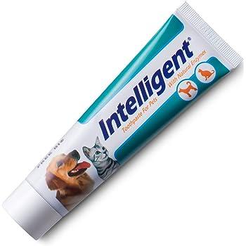 【歯の黄ばみ取れ、茶色の色素沈着を落とす、歯石除去、口臭対策】INTELLIGENT(インテリジェント)唾液の自浄酵素入り猫犬用歯磨き粉 80g【ペットの歯みがきペースト、はみがき粉】
