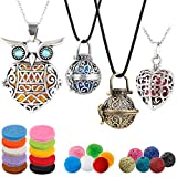 4 PCS Classical Aromatherapy Essential Oil Diffuser Necklace Pendant Combinations, Garden...