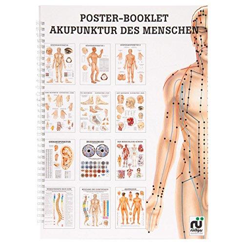 Akupunktur des Menschen Mini-Poster Booklet Anatomie 34x24 cm, 12 Poster