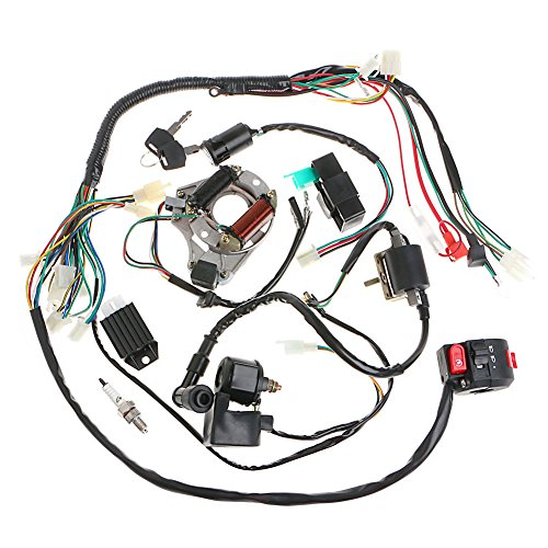 Minireen Full Wiring Harness Loom kit CDI Coil Magneto Kick Start Engine for 50cc 70cc 90cc 110cc 125cc ATV Quad Bike Buggy Go Kart Pit Dirt Bikes