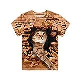 Agroupdream - Camiseta de manga corta para niños, cuello redondo, para niños de 3 a 16 años Marrón Gato de ladrillo 7-8 Años