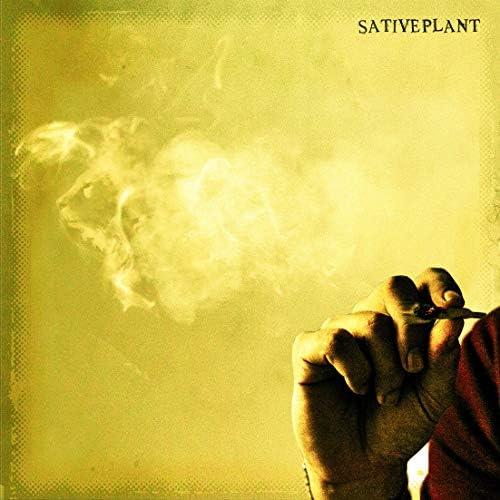 Sative Plant