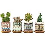 Design unico: questo set di vasi da fiori ha uno stile fresco unico e un design di gusto rustico. I bei colori e le piante sono perfettamente integrati. È un modo ideale per apprezzare le tue piante e i tuoi fiori preferiti. Può essere utilizzato non...