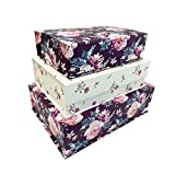 Set of 3 Nesting Hinged Lid Storage Boxes - Decorative Stackable Spiritual Paperboard Containers with Magnetic Tab Clasp - Inspirational Phrases (Thankful)