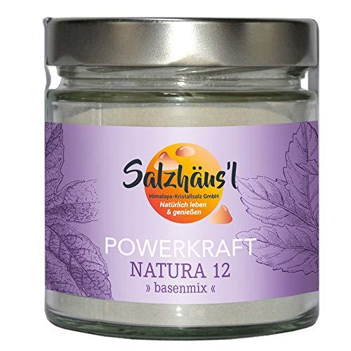 Powerkraft Natura 12 SALZHÄUS`L Basen-Mix Basenpulver 300 g Korallenalgenkalk Mineralsalze