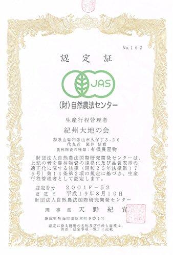 紀州大地の会・果樹部会「有機キウイフルーツ3kg」