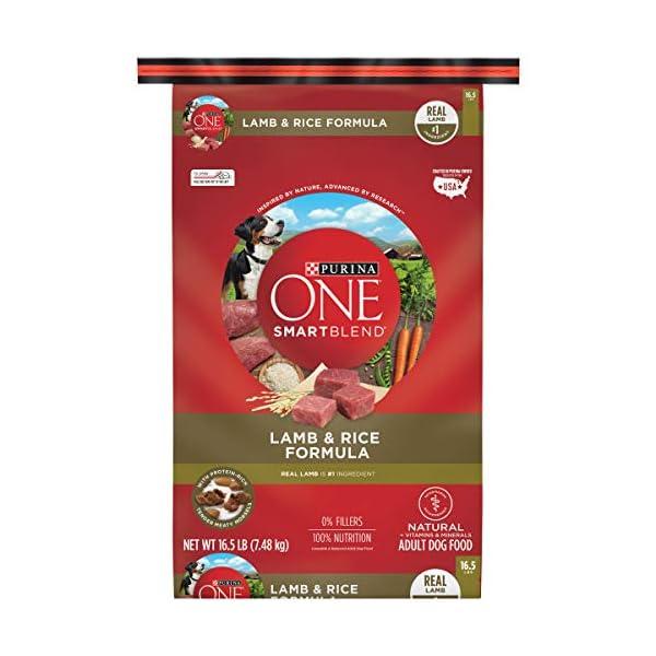 Purina ONE Natural Dry Dog Food, SmartBlend Lamb & Rice Formula – 16.5 lb. Bag