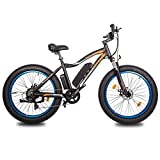"""ECOTRIC 26"""" Fat Tire Electric Bicycle Mountain Bike 500W Motor 36V/13AH Powerful Removable Lithium Battery Ebike Beach Snow Shock Absorption (Blue) - UL Certified"""