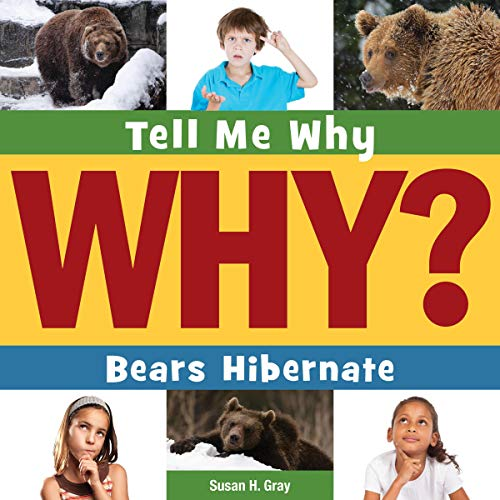 Bears Hibernate cover art