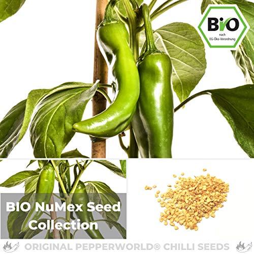 Pepperworld Bio Chili Saat-Sortiment, 4 Sorten, je 10 Korn, Chili-Samen Set zum Anpflanzen