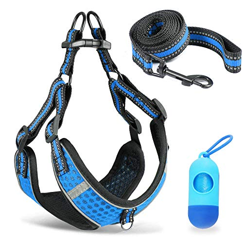 Buy Dog Harness