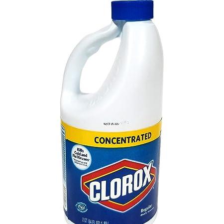Bixell Hidden Compartment Secret Diversion Stash Bleach Bottle Safe Personal Security (64 fl oz)