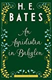 An Aspidistra in Babylon (English Edition)